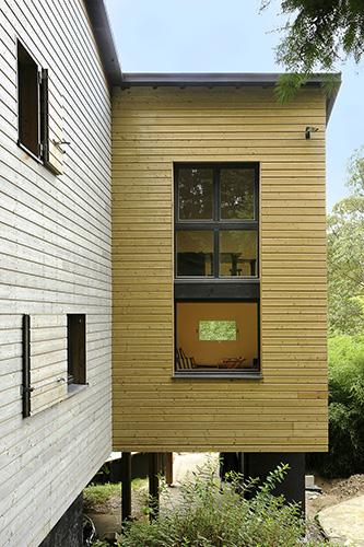 fenêtre sur le sous-bois